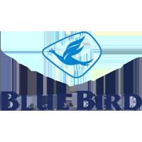 2 Blue Bird